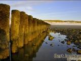 ameland,zon,zee,strand,sea,beach,