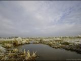hardenberg,sneeuw,snow,winter,landschap,landscape
